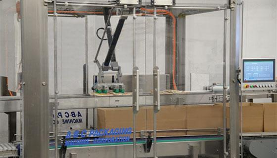 Robotic case packer for flexible packaging