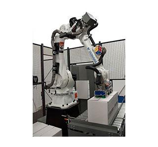Robotic palletizer for cases, trays and bags flexibility throughout